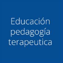 Maestro de Educación Pedagogía Terapéutica